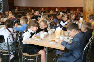 Бесплатное питание в школе в 2017-2018 году: кому положено, порядок оформления и необходимые документы
