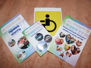 Целевая государственная программа - Доступная среда - в 2018 году для инвалидов: особенности и реализация программы, последние новости и продление