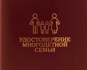 Социальные пособия и выплаты многодетным семьям в 2017-2018 году: единовременные и ежемесячные пособия, размер и расчет, документы, условия и порядок получения