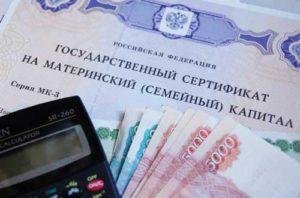 Материнский капитал в России: что это такое, в каком году появился, законы и особенности