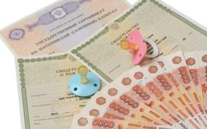 Материнский капитал через МФЦ в 2017-2018 году: особенности и правила оформления, необходимые документы