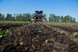 Изображение - Руководство, как получить бесплатно гектар земли на дальнем востоке Ispolzovanie-zemli-300x200