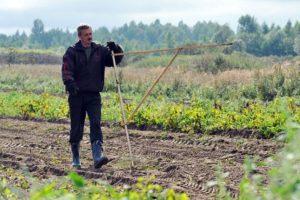 Изображение - Руководство, как получить бесплатно гектар земли на дальнем востоке dal_nevostochnyy_gektar-300x200