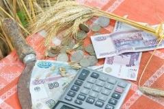 Субсидии на возмещение затрат по кредитам и займам в 2020 году