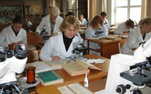 Стипендия в аспирантуре в 2020 году в России