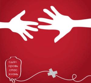 Как стать донором крови в России