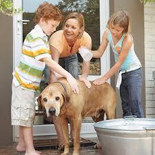 Приёмная семья — понятие, как оформить, обязанности родителей
