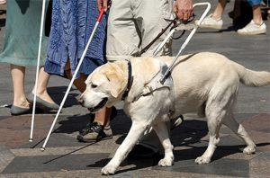 Оформление инвалидности по зрению в 2020 году