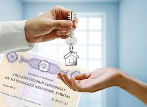Региональный материнский капитал в Тамбове и Тамбовской области в 2020 году