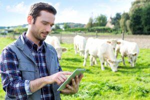 Льготы начинающим фермерам в 2020 году