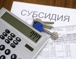 ИП и ООО с основным ОКВЭД 45.3 не вправе претендовать на субсидии (разъяснения ФНС)