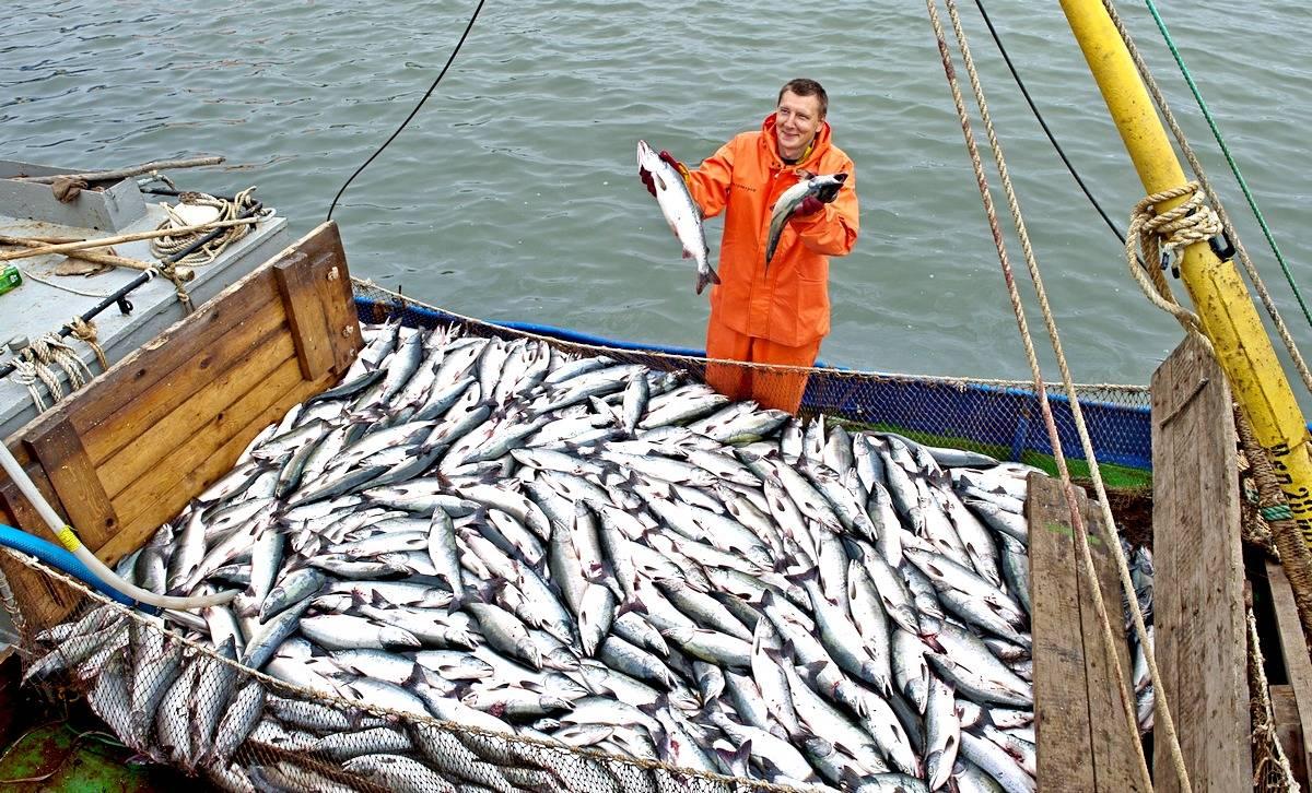 Рыбному бизнесу РФ придется искать новые рынки сбыта, если Китай не откроет порты