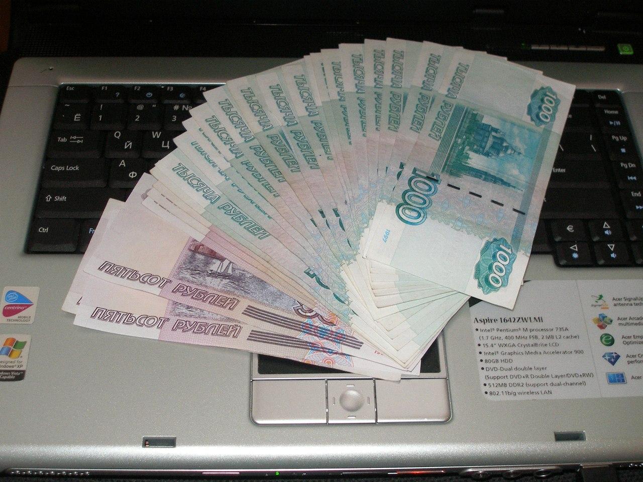 В России выявлено более 1500 финансовых онлайн-пирамид
