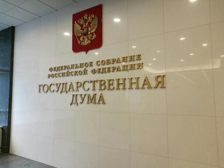 Памфилова отклонила перенос выборов в Госдуму