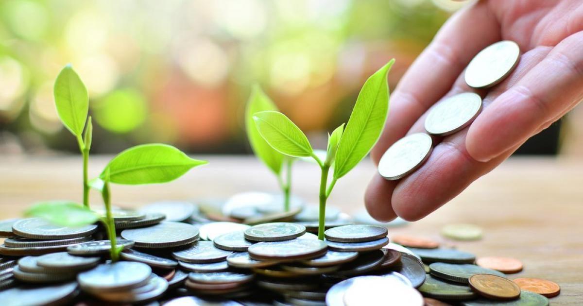 Материнский капитал могут разрешить инвестировать в акции компаний