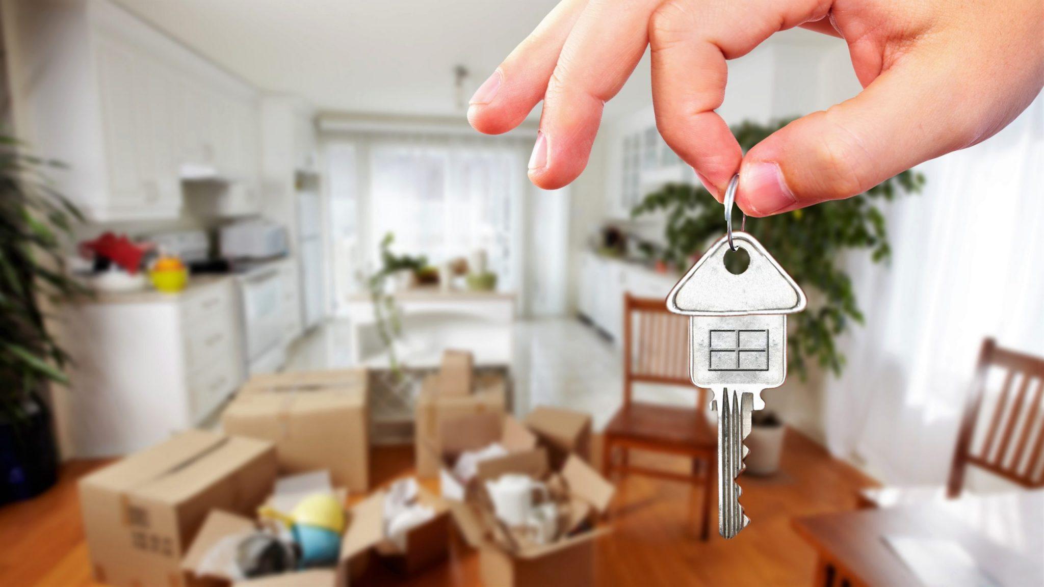 Как налоговая может узнать, что квартира сдаётся нелегально