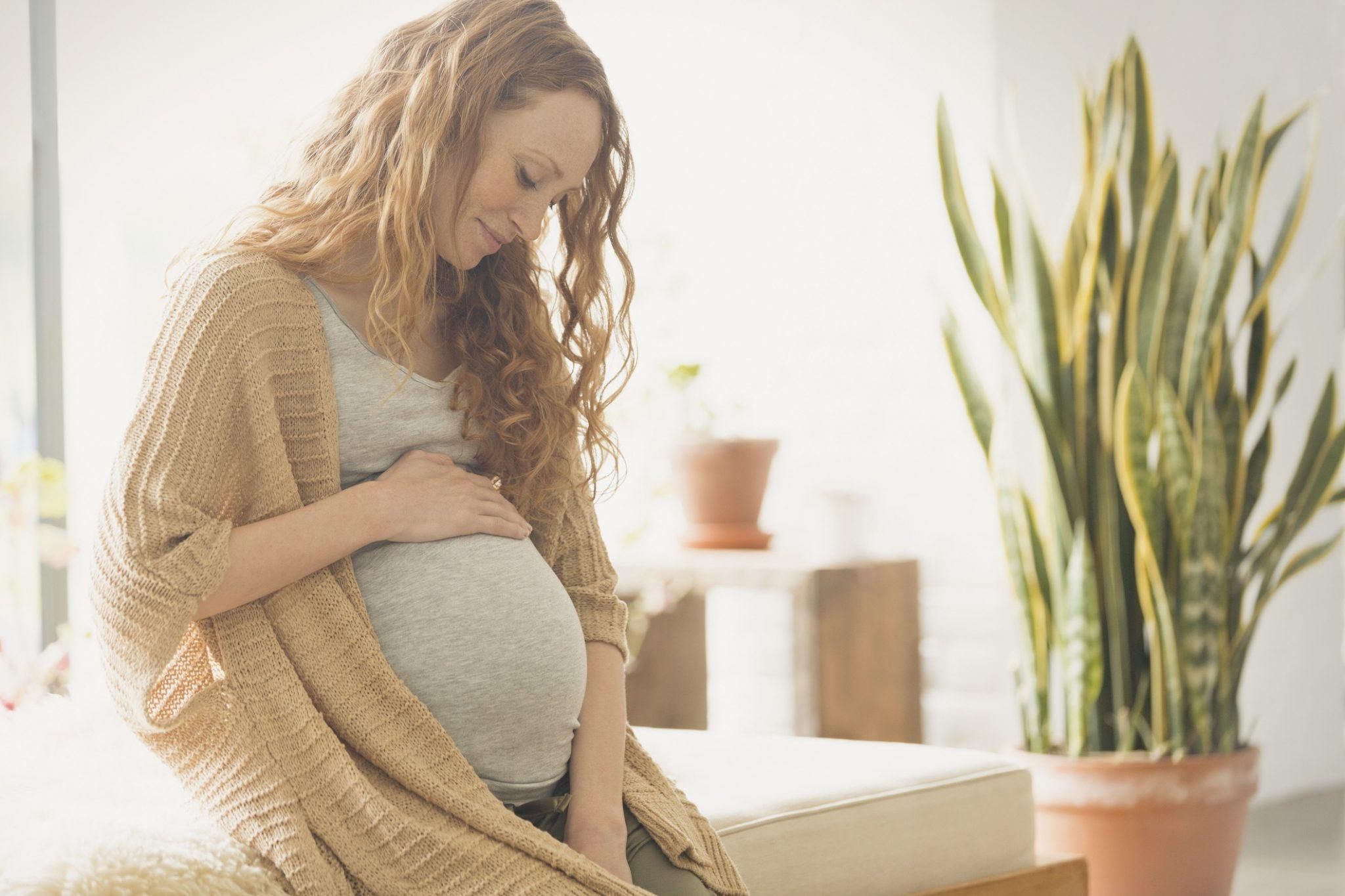 Новая выплата беременным женщинам в размере 20 тысяч рублей