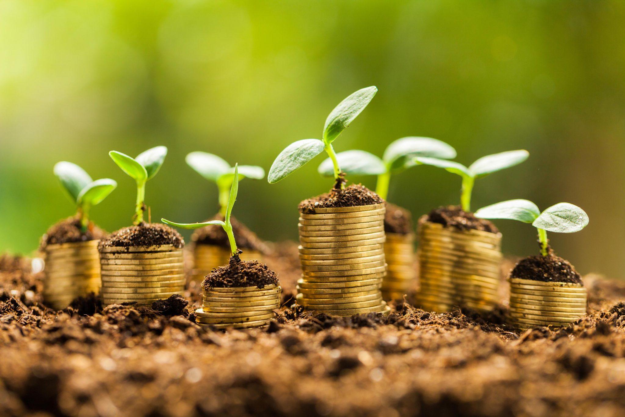 Топ-5 идей для получения пассивного дохода при минимальных вложениях