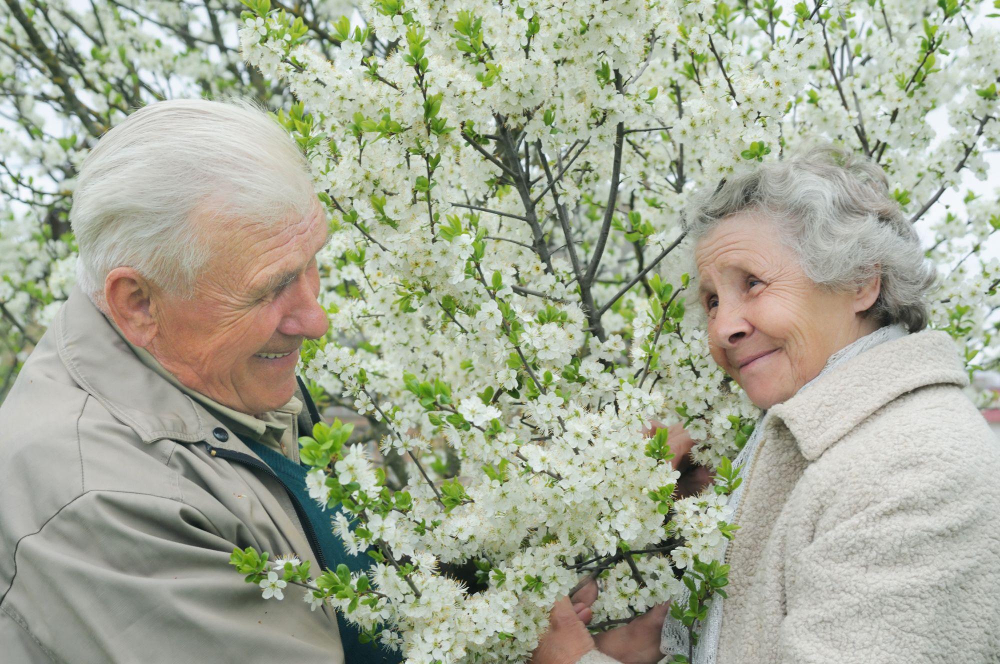 Собянин пообещал снять режим самоизоляции для пенсионеров и разблокировать социальные карты с 8 марта