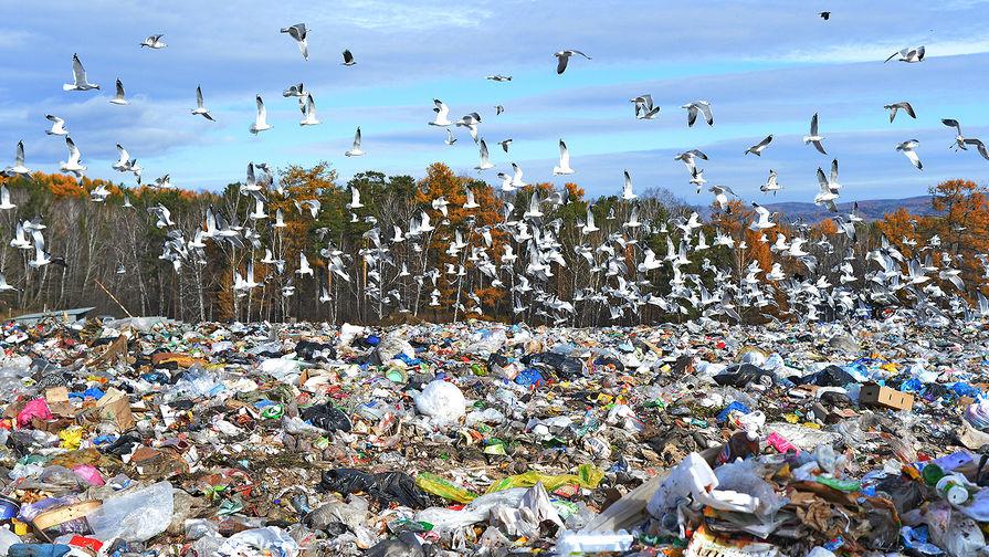 Борьба с завалами бытового мусора будет продолжена