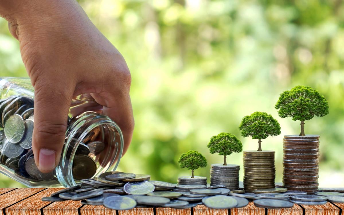 Как сохранить деньги или вырастить их в кризис?