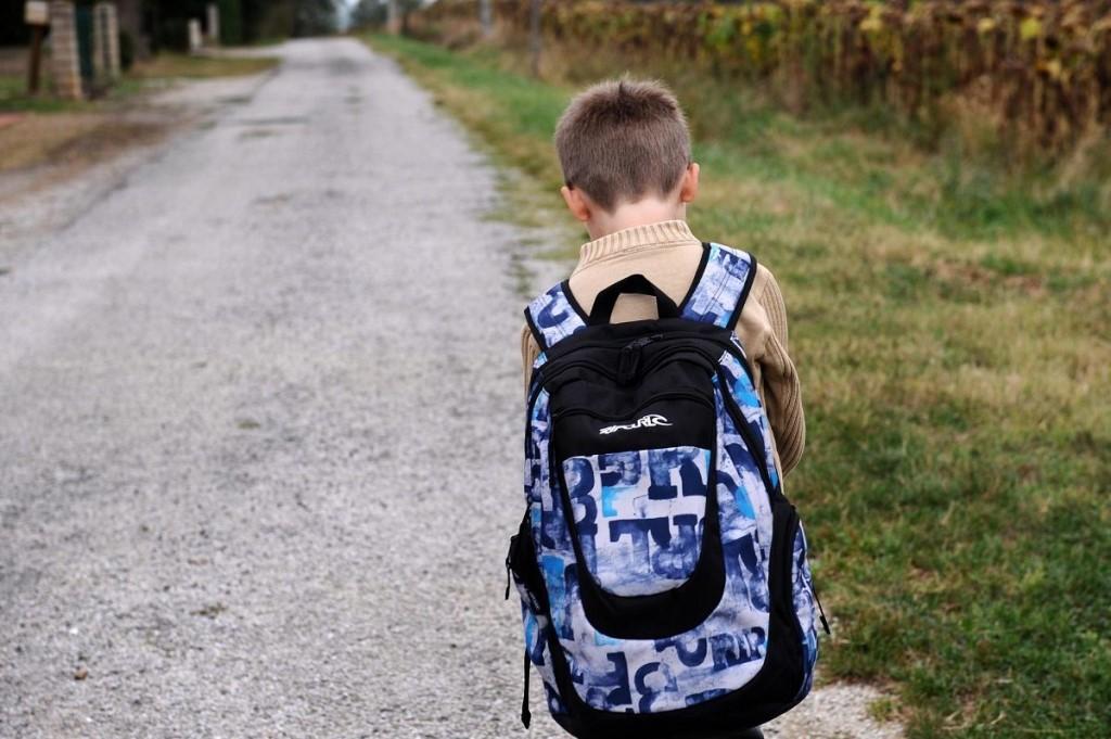 Какое расстояние должно быть до садика или школы?