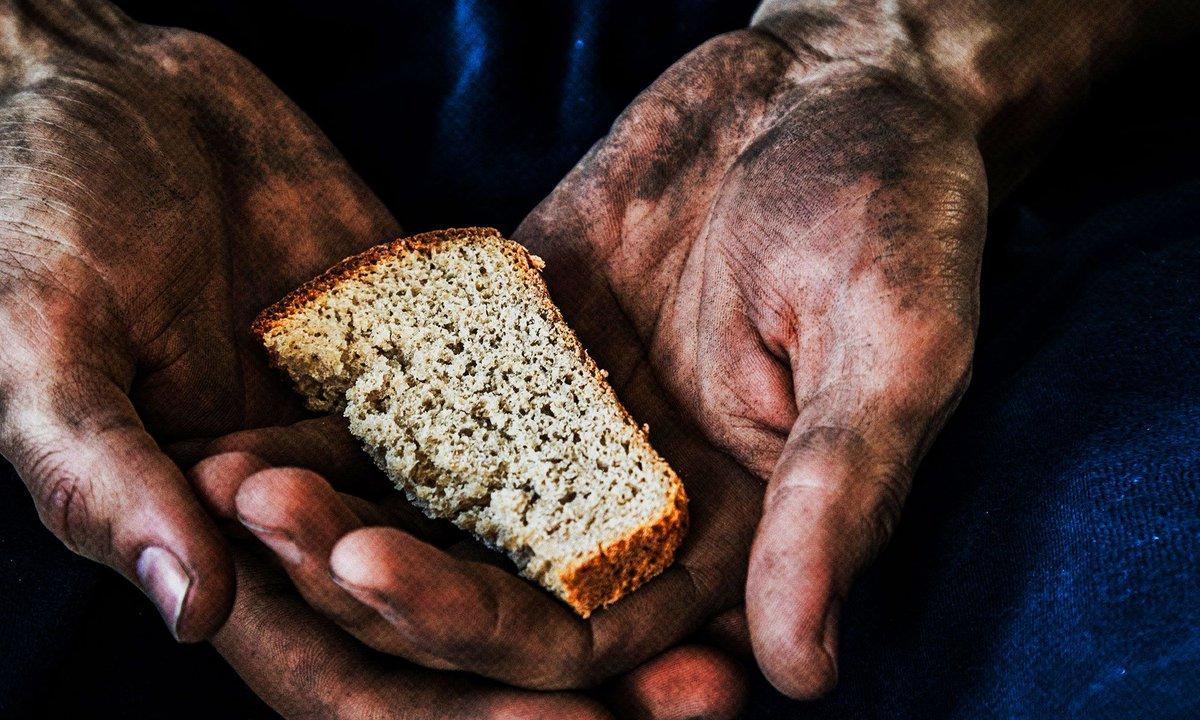 В России возникла угроза голода из-за климата