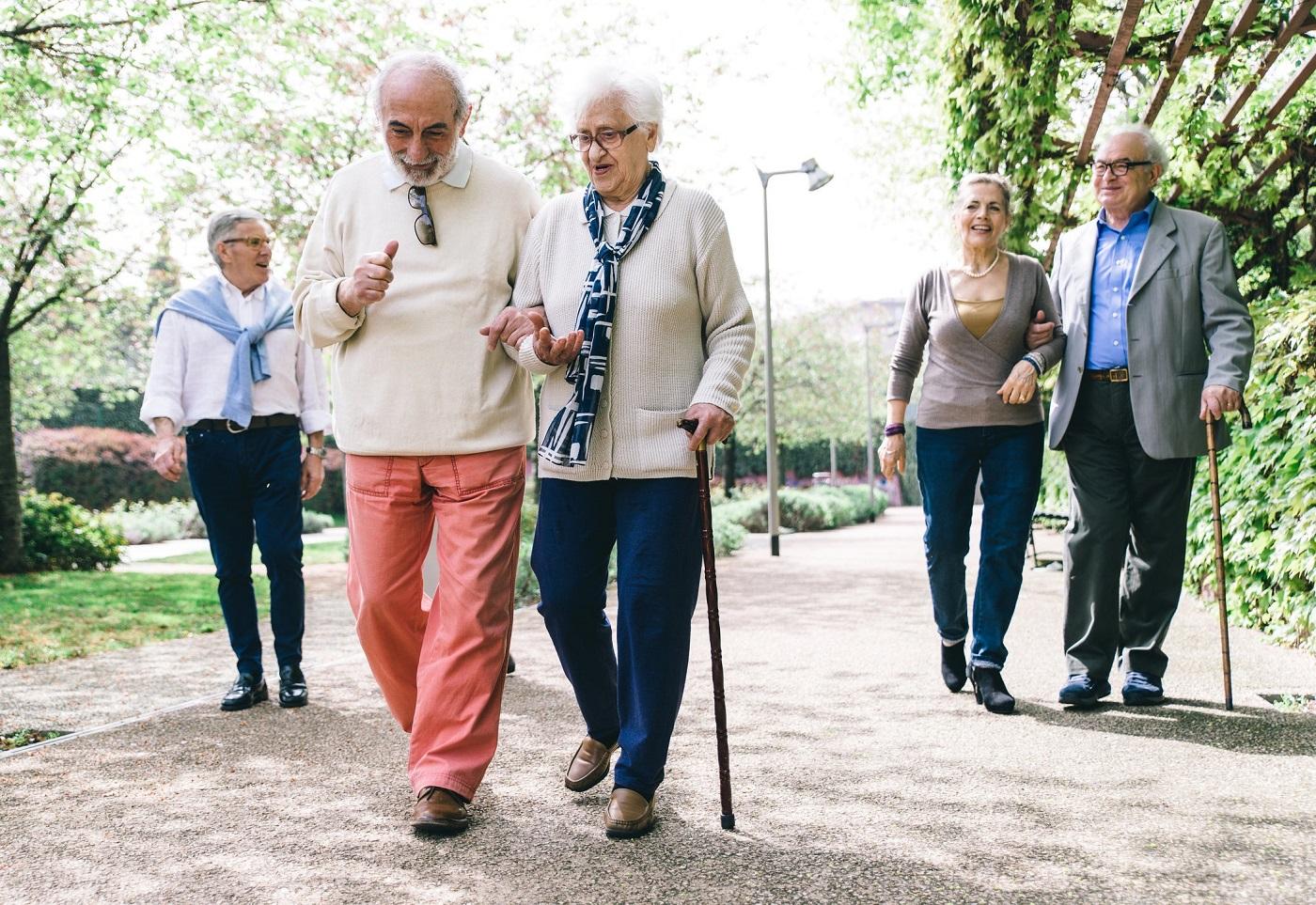 Чем отличается пенсия по старости от страховой