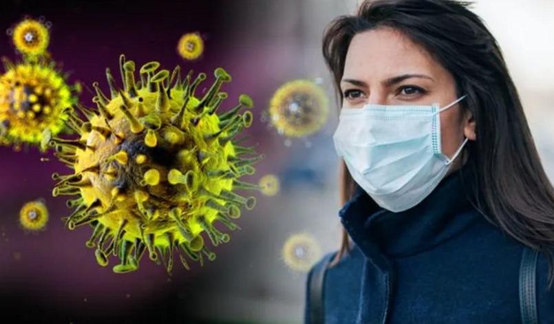 Признают ли коронавирус форс-мажором в России, и в каких договорах это учитывается