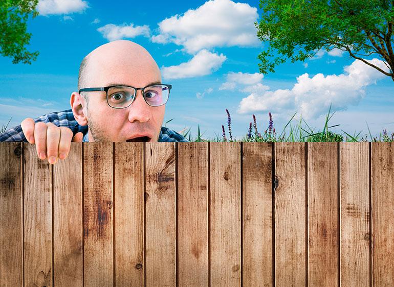 Эксперт предупредил, по каким причинам соседи по даче могут донести на вас