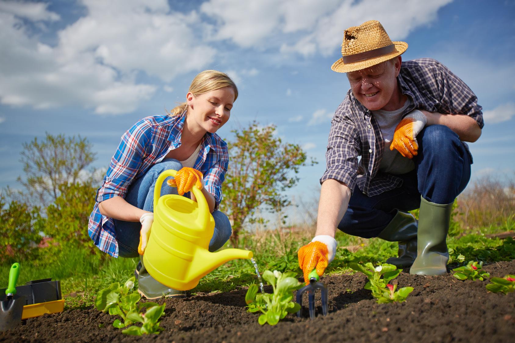 Эксперт рассказал дачникам, как эффективно побороть сорняки