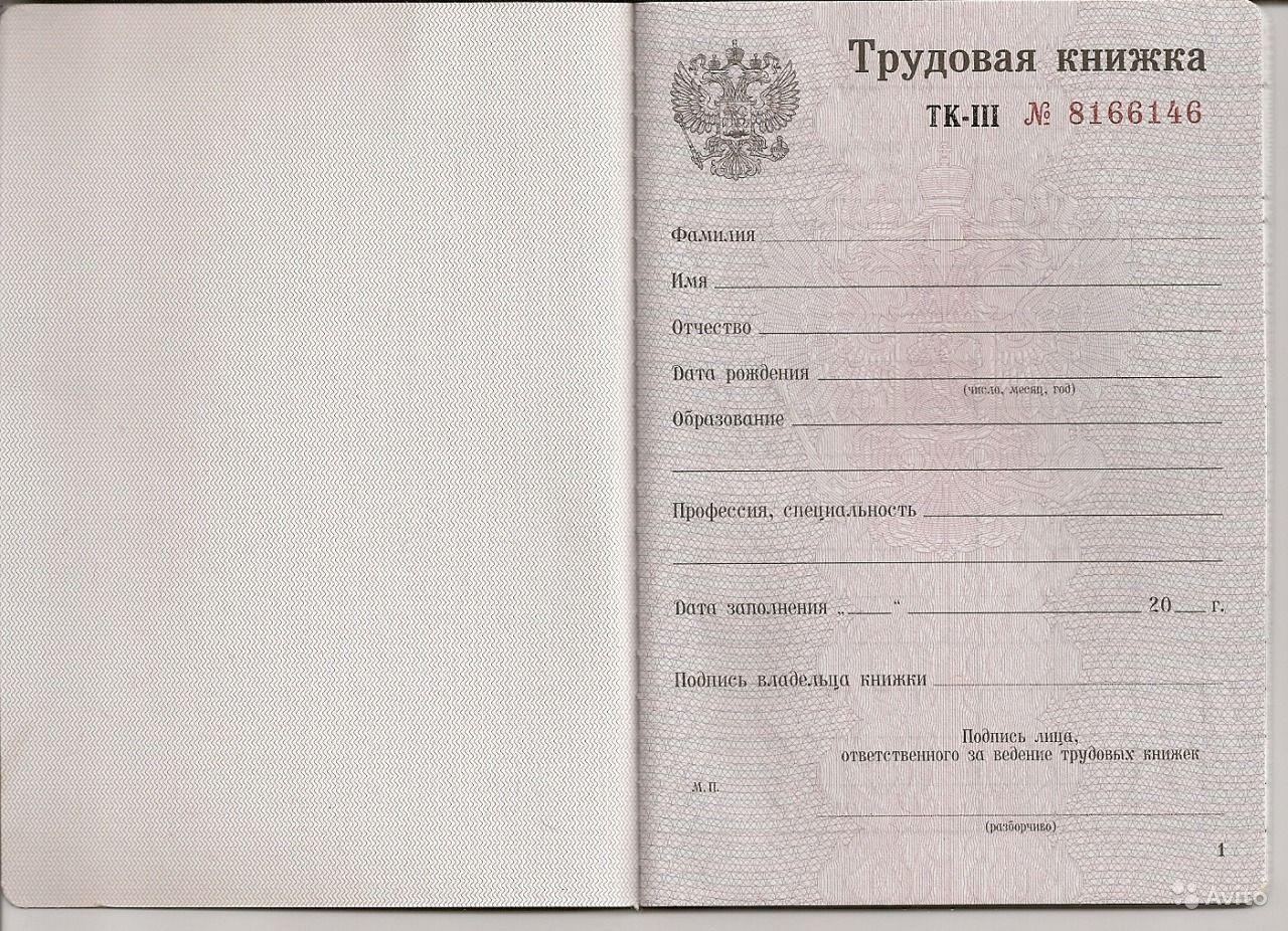 Россиян поразил одинаковый размер пенсии трудоголиков и безработных граждан